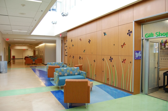 Niswonger Childrens Hospital 13